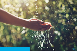 A person cupping hands trying to catch water - Ashburton Lyndhurst Irrigation Limited